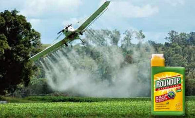 OGM:-l'Olanda-dice-No-a-Monsanto-e-mette-al-bando-l'erbicida-Roundup